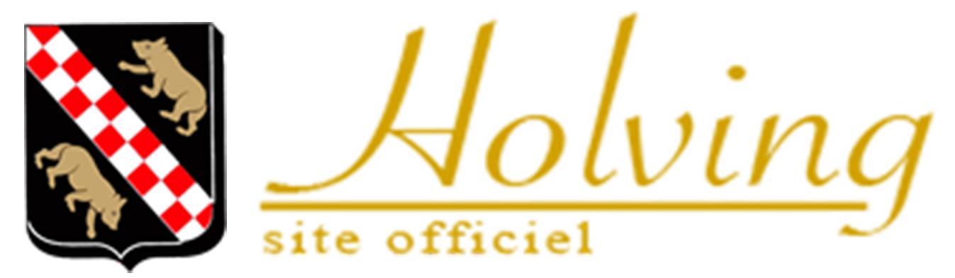 Commune de Holving